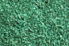 Green wood chips Royalty Free Stock Photography