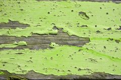 Green Wood Cracked Peeling Wood Planks. For Texture royalty free stock photography