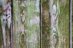Green wood fence as a natural background. Green wood fence. Natural background Stock Photos