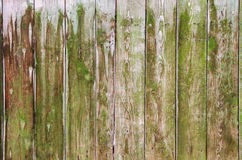 Green wood fence as a natural background. Old green wood fence. Texture background Royalty Free Stock Photo