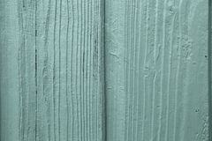 Green Wood Grain Closeup. Painted green wood grain closeup of a garden shed stock images