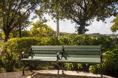 Green Wood and Iron Bench by Shrubbery Royalty Free Stock Photography