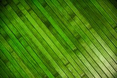 Green wood parquet. Abstract background Stock Photos