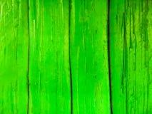 Green wood pattern Royalty Free Stock Image