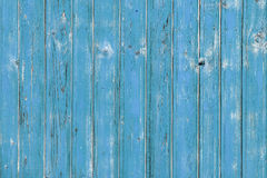 Green wood planks Stock Image
