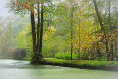 Green Wood by River. A pretty green English wood by a river in early autumn. Tall trees hang over the water while smaller trees and shrubs line the riverbank Royalty Free Stock Images