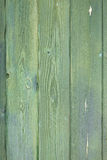 Green wood texture royalty free stock photo