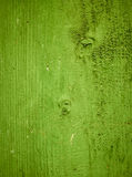 Green wood texture background. Closeup Royalty Free Stock Images