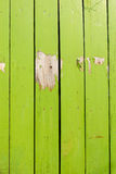 Green wood texture background Stock Images