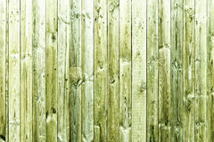 The green wood texture with natural patterns. Background Royalty Free Stock Image