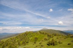 Green Wooded Hill in the Grand Carpathians Royalty Free Stock Photography