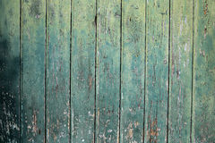 Green wooden background. Background of wooden planks with old green paint Stock Images
