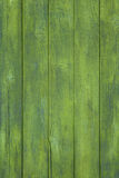 Green wooden background Stock Photo
