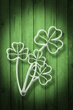 Green wooden background Print of Clovers Royalty Free Stock Image