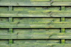 Green Wooden background or texture. High resolution color image Royalty Free Stock Images
