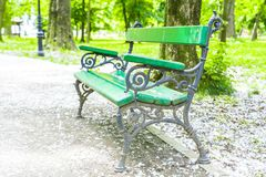 Green wooden bench in the park with poplar flower down Royalty Free Stock Photo