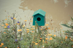 Green Wooden bird houses beside the river. Royalty Free Stock Photography