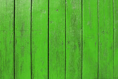 Green wooden boards background Stock Image