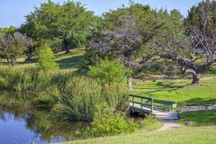 Green wooden bridge at a park Stock Images