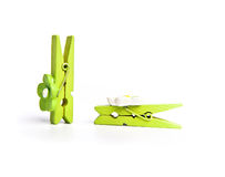 Green wooden clothespeg Stock Images