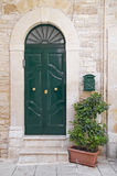 Green wooden frontdoor. Royalty Free Stock Images