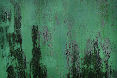 Green wooden grunge Wall Royalty Free Stock Photos