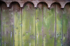 Green wooden old plank texture as background. Closeup Stock Photos