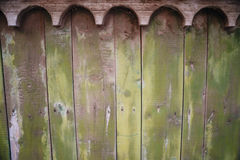 Green wooden old plank texture as background. Closeup Royalty Free Stock Photography
