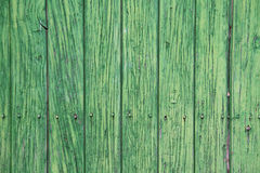 Green wooden panels. Ancient door Royalty Free Stock Photos