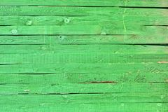 Fence, green wooden pine tree wall closeup, ecological barrier diversity. Green wooden pine tree wall closeup in sunny day, ecological fence barrier diversity royalty free stock photo