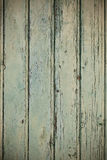 Green wooden planks surface background Stock Image