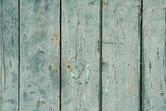 Green wooden texture Stock Image