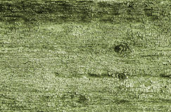 Green wooden texture. Wooden texture with old blue paint Stock Image