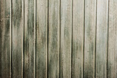 Green wooden wall Royalty Free Stock Photos