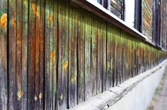 Green wooden wall in perspective Stock Photo
