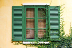 Green wooden window Stock Photos