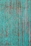 Green woodgrain Stock Images