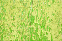 Green woodgrain Royalty Free Stock Images