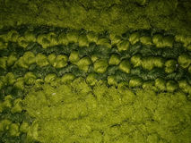 Green Wool Blanket Royalty Free Stock Images
