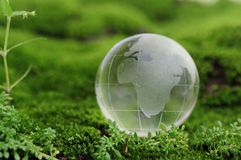 Free Green World Stock Photos - 14328783
