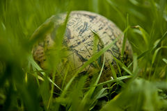Green world. Concept, shallow depth of field Royalty Free Stock Image
