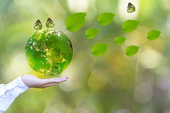 Green world and butterfly in man hand,. Green world with butterfly and leaves in man hand, green background, Earth image provided by Nasa stock images