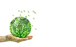 Green world in hand on white background Royalty Free Stock Photo