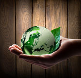 Green world in the hand. With wood background royalty free stock photo