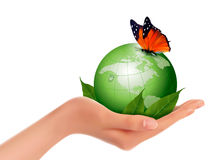 Green world with leaf and butterfly in woman hand. Vector illust Stock Images