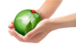 Green world and leaf have love bug in woman hands. Stock Image