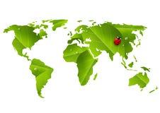 Green World map with ladybug. Isolated on white background