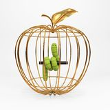 Green worm in the apple Stock Photography