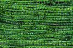 Green Woven Straw. Colored woven straw, part of a colored lamp stock image