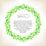 Green_wreath Imagem de Stock Royalty Free